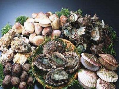 海鲜 贝类 .jpg